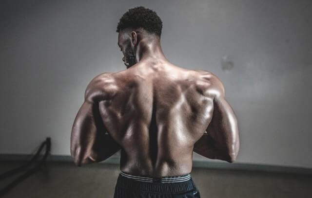 人體肌群示意圖