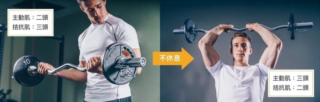 超級組主動肌與拮抗肌