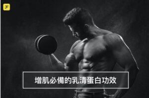 乳清蛋白功效